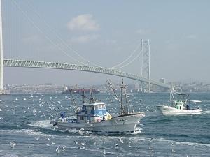 【平成30年7月14日~】特別展『海からみた兵庫県 二つの海にはさまれて』を開催! – もようしもの